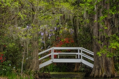 Magnolia-Gardens-Bridge