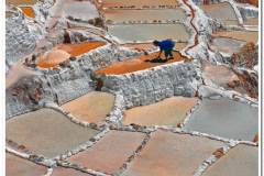 Working the Salt Pools in Peru