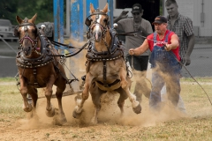 Pony Pull Competition