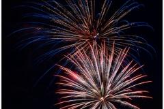 Firework Blooms