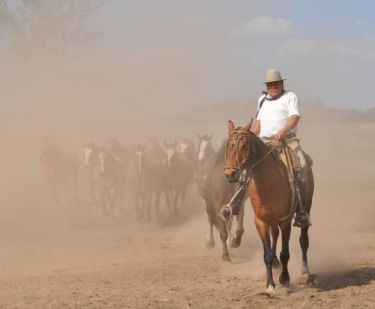 Gaucho Ranchero