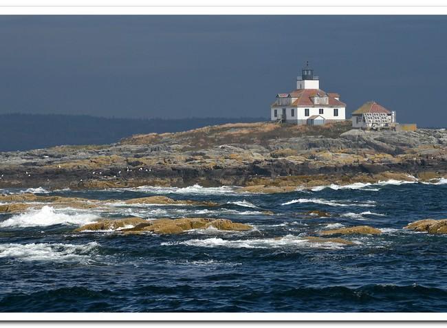 Acadia Light